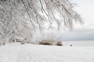 Weißer Schnee dank Belichtungskorrektur