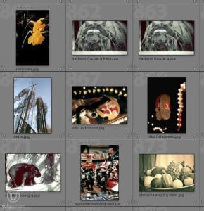 Fotoarchivierung - Sortierung