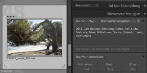 Fotoarchivierung - Verschlagwortung