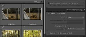 Fotoarchivierung - Fotos umbenennen